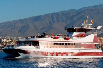 royaldelfin